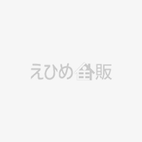 【完成見学会】気密測定を行いました!C値は0.5!!